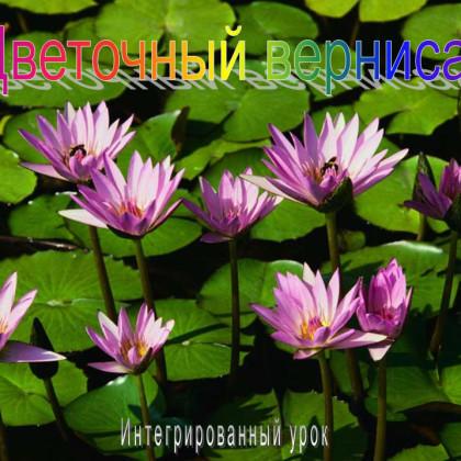 Интегрированный урок по русскому языку — «Цветочный вернисаж»